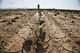 Orig.src_.Susanne.Posel_.Daily_.News-geoengineering.drought.famine_occupycorporatism
