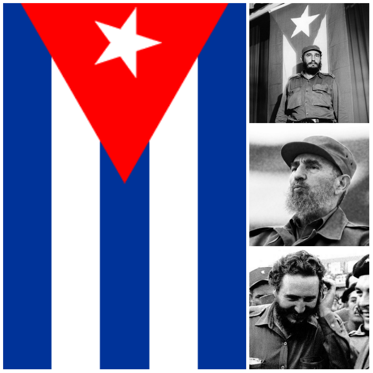collage-fidel