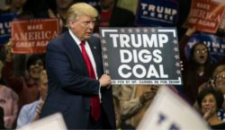 Trump and Climate Catastrophe