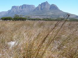 Cape-town-in-drought-cycle-Table-mountain-with-no-rain