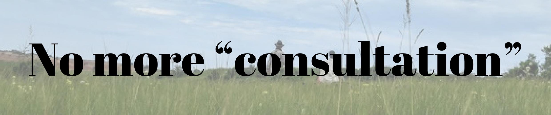 """No more """"consultation"""""""